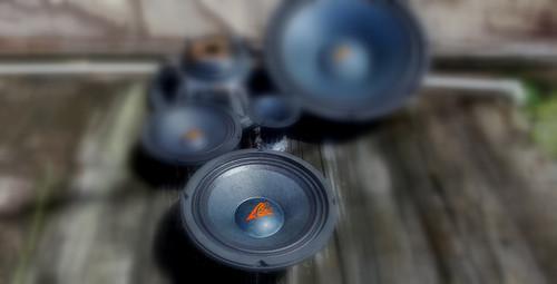 "UN-8 8"" Loudspeaker"