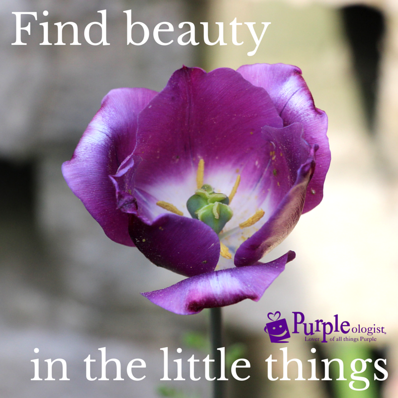 11 Purple Quotes To Share With Those Who Love Purple Purpleologist