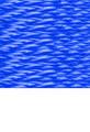 Shoreline Marine SL91494 UTLTY LINE 5709-0446