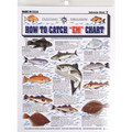 Tightlines 00004 How To Catch Em 1232-0002