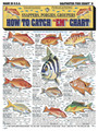 Tightlines 00008 How To Catch Em 1232-0006