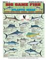 Tightlines 00027 Big Game Fish 1232-0010