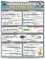 Tightlines 00034 Offshore Rigging 1232-0013
