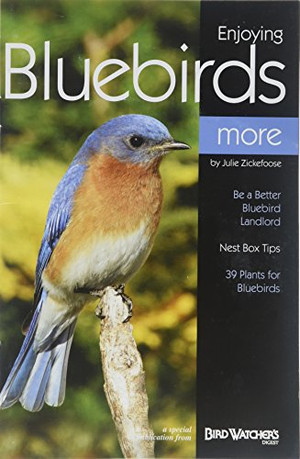 Enjoying Bluebirds More: A Special Publication from Bird Watcher's Digest