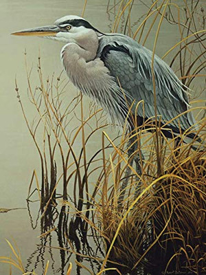 Cobble Hill Great Blue Heron 500 Piece Jigsaw Puzzle