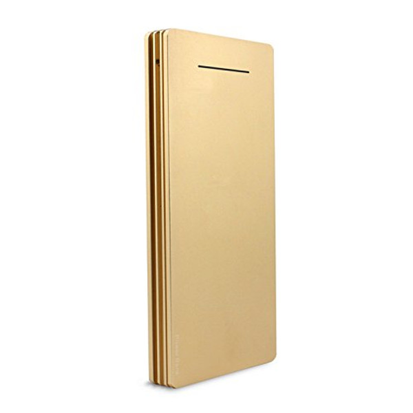 Lian LifeStyle 12000mAh Portable Charger Dual USB Output - Ultra High Capacity Power Bank with 2A Output High-Speed Charging for iPhone iPad & Samsung Galaxy & More -Y1 Gold