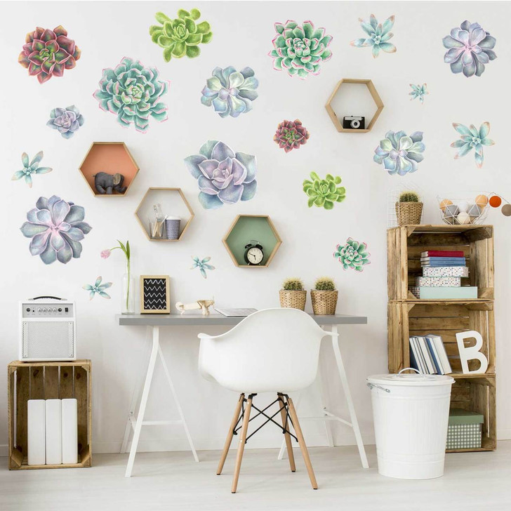 Succulent Variety Watercolor Wall Decal Kit by Chromantics