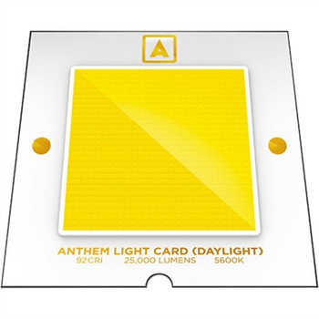 ANTHEM ONE A-ONE-DAY-BLK ANTHEM POWER AC LED LIGHT WITH DAYLIGHT LIGHT CARD (BLACK)
