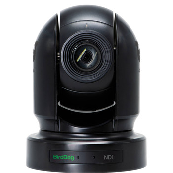 BirdDog Eyes P200 1080p Full NDI PTZ Camera (Black)