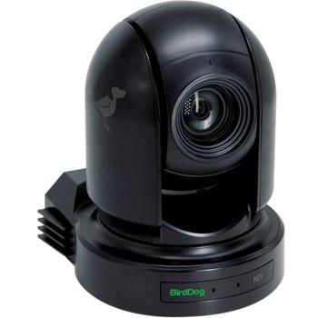 BirdDog Eyes P200 1080p Full NDI PTZ Camera (Black)
