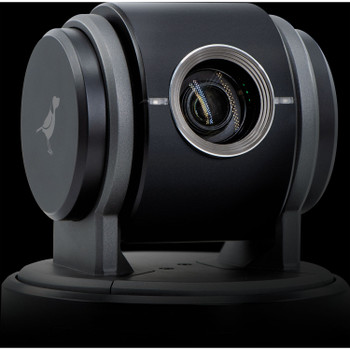 BirdDog Eyes P100 1080p Full NDI PTZ Camera (Black)