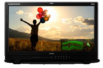 "Flander Scientific Inc. XM310K 31"" 4K HDR LCD Monitor with 12G/6G/3G/HD-SDI Inputs"