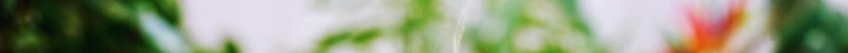 greenery3.png