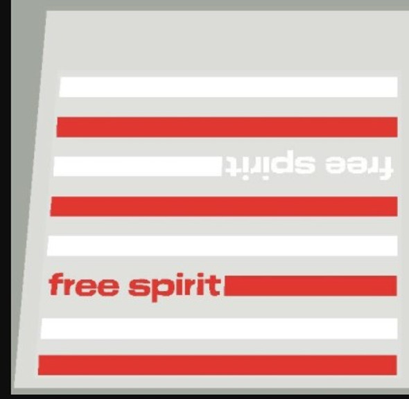 Sears Free Spirit Down Tube Panel Decal - Red/White