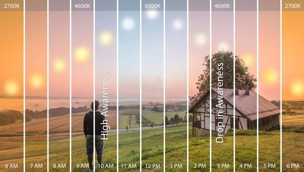 Circadian Lighting  - what is it?