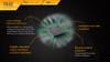 Fenix TK32 LED Flashlight Chip