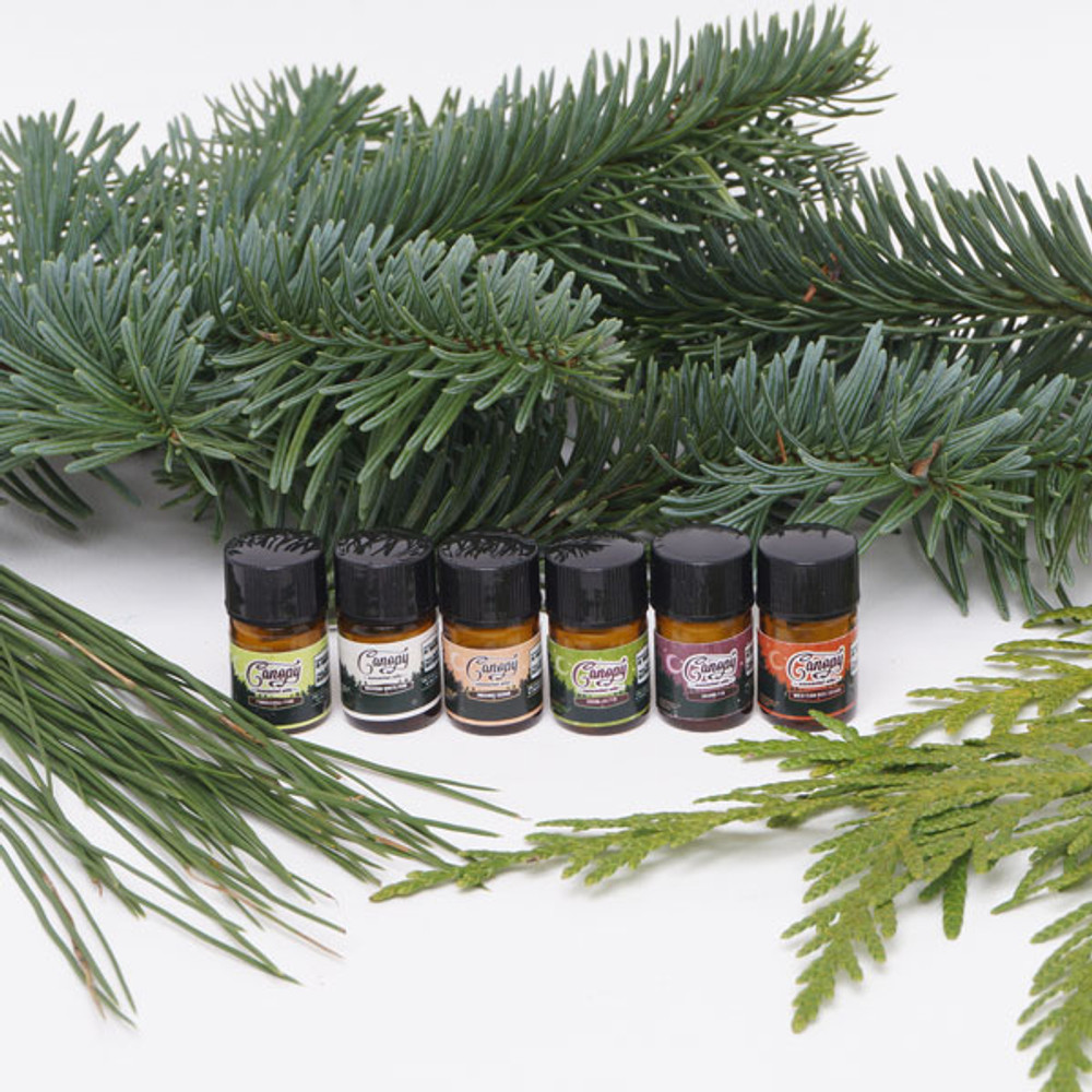 Canopy essential oil sample set