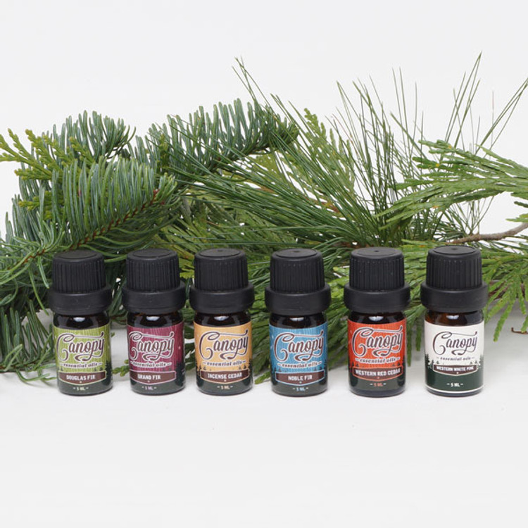 Canopy essential oil gift set