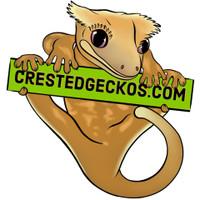 CrestedGeckos.com