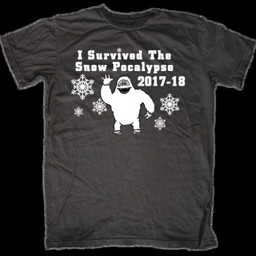 I Survived The Snow Pocalypse 2017-18