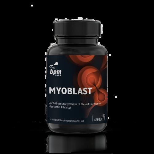 Myoblast