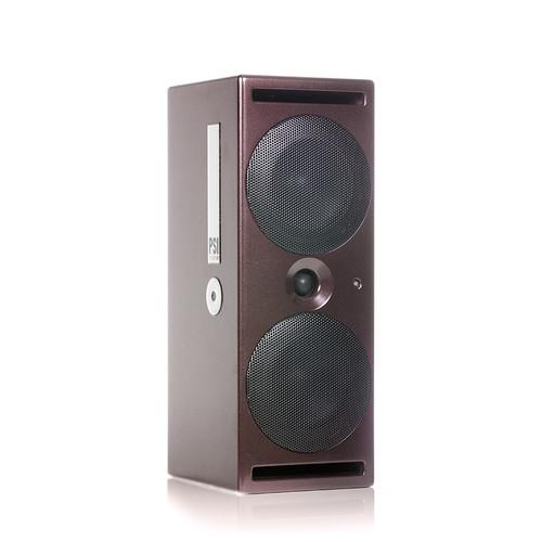 PSI Audio A214-M Angle at ZenProAudio.com