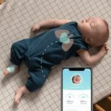 Owlet Smart Sock Plus 3 Mint Heart
