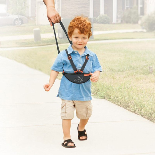 Dreambaby Deluxe Safety Walking Harness live