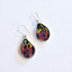 Fair Trade Butterfly Wing Earrings from Peru