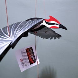 Fair Trade Flying Woodpecker Mobile from Colombia