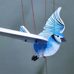 Fair Trade Flying Blue Jay Mobile from Colombia