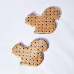 all natural pumpkin squash dog treat biscuit made in usa