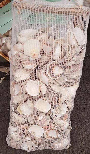 9lb Bag of Shells