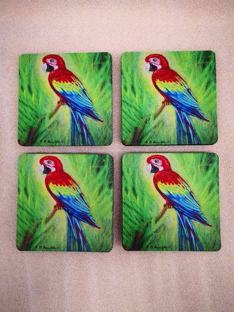 Red Macaw Coasters - Set of 4