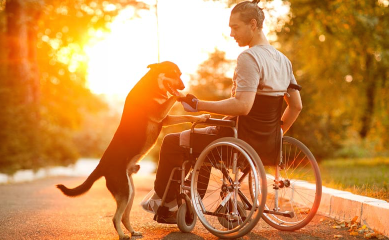 Affordable Wheelchairs For Sale Australia