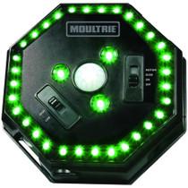 Moultrie Feeder Hog Light C Alkaline Green LEDs Black