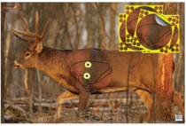 """Birchwood Casey Eze-Scorer With Shoot-N-C Overlay Whitetail Deer Targets 23x35"""" Two Folded Deer With Four 8-Inch Overlays"""