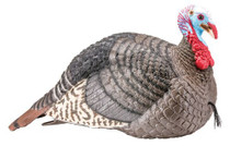 Hunters Specialties Strut-lite Jake Turkey Decoy