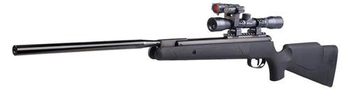 Benjamin Varmint Power Pack Air Rifle BO .22 Pellet Scope Black Synthetic Stock