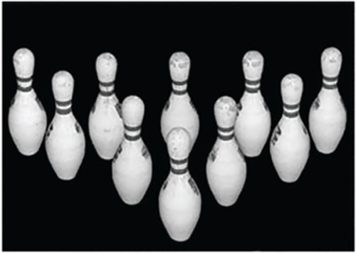 """Looper Law Enforcement Bowling Pin Targets Black and White Photo-Target with 10 Bowling Pins, Size 28x20"""", 100/Pack"""