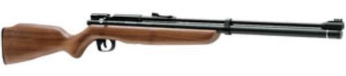 Benjamin Dual Fuel Air Rifle CO2 Bolt .22 Black