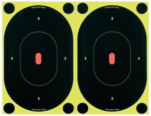 Birchwood Casey Shoot-N-C Targets, 10/Pack
