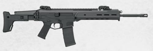 """Bushmaster ACR Basic 556/223 Rem 16"""" Barrel Folding Stock 30 Rd Mag"""