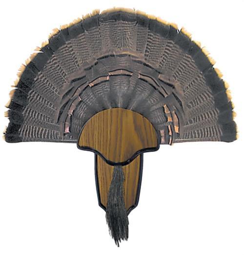Hunters Specialties Turkey Tail/Beard Mount