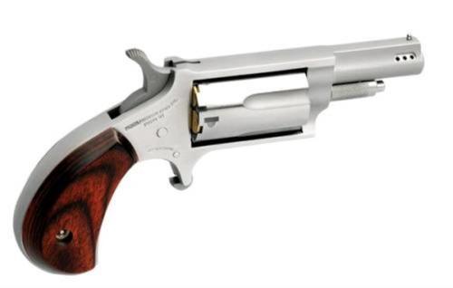 North American Arms Mini 22mag/22lr 1-5/8 Ss Prtd