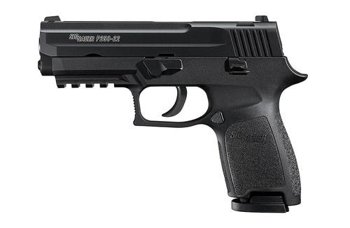 Sig P250 22LR 3.9In Nitron Black DAO Adjustable Sights Modular Polymer Grip (2) 10Rd Poly MAG