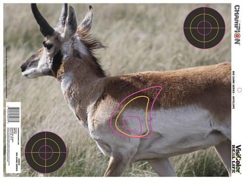 Champion VisiColor Real Life Targets Deer/Antelope/Whitetail Deer