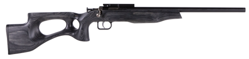 "Crickett Black Target 22LR, 16.125"" Barrel, Laminate Thumbhole Black Stock, Blued"