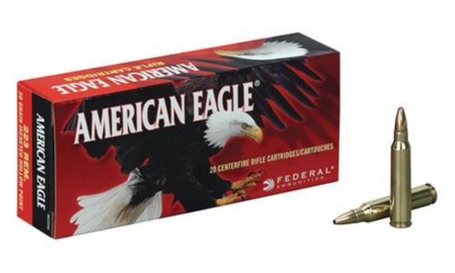 Federal Standard 223 Rem Full Metal Jacket BT 62gr, 20Box