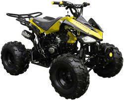 Coolster ATV-3125C-2 / 125CC Semi Automatic Mid Size - Fully Assembled and Tested